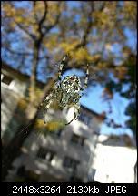 Kamera (Video- und Fotoqualität) vom Galaxy S III-20121021_130019.jpg