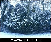 Kamera (Video- und Fotoqualität) vom Galaxy S III-20121209_083359.jpg
