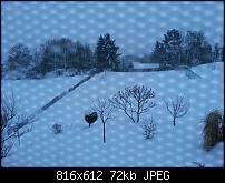 Kamera (Video- und Fotoqualität) vom Galaxy S III-uploadfromtaptalk1355066337630.jpg