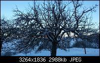 Kamera (Video- und Fotoqualität) vom Galaxy S III-3.jpg