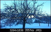 Kamera (Video- und Fotoqualität) vom Galaxy S III-4.jpg
