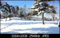 Kamera (Video- und Fotoqualität) vom Galaxy S III-2013-02-10-13.41.38.jpg