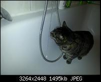 Kamera (Video- und Fotoqualität) vom Galaxy S III-20120607_212257.jpg