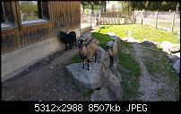 Samsung Galaxy S6 - Fotoqualität-20150423_152149.jpg