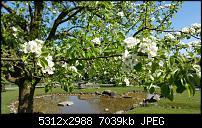 Samsung Galaxy S6 - Fotoqualität-20150423_152238.jpg