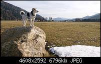 Sony Xperia XZ3 Kameraqualität-dsc_1816.jpg