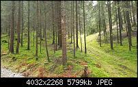 Sony Xperia XZ3 Kameraqualität-20181224_122139.jpg