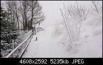 Sony Xperia XZ3 Kameraqualität-dsc_1822.jpg