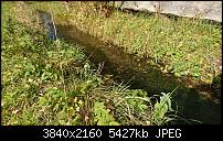 Sony Xperia XZ - Kamera Diskussionsthread-dsc_1359.jpg