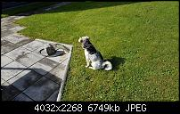 Sony Xperia XZ - Kamera Diskussionsthread-20161026_115915.jpg