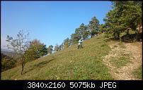 Sony Xperia Z2 - Fotoqualität-uploadfromtaptalk1415106793891.jpg