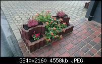 Sony Xperia Z3 - Fotoqualität-dsc_0014.jpg