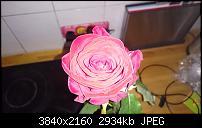Sony Xperia Z3 - Fotoqualität-uploadfromtaptalk1415953458183.jpg