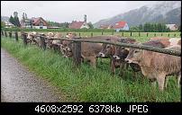 Sony Xperia ZX2 – Qualität der Fotos-dsc_1438.jpg