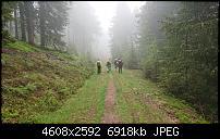 Sony Xperia ZX2 – Qualität der Fotos-dsc_1513.jpg