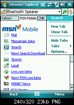 Spb Pocket Plus 4.0-401-internet-explorer-search.png