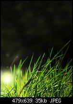 HTC Touch HD Wallpapers-4.jpg
