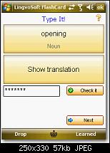 Lingvosoft 2008-bild-13.jpg