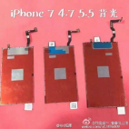 iPhone 7 Display Leak