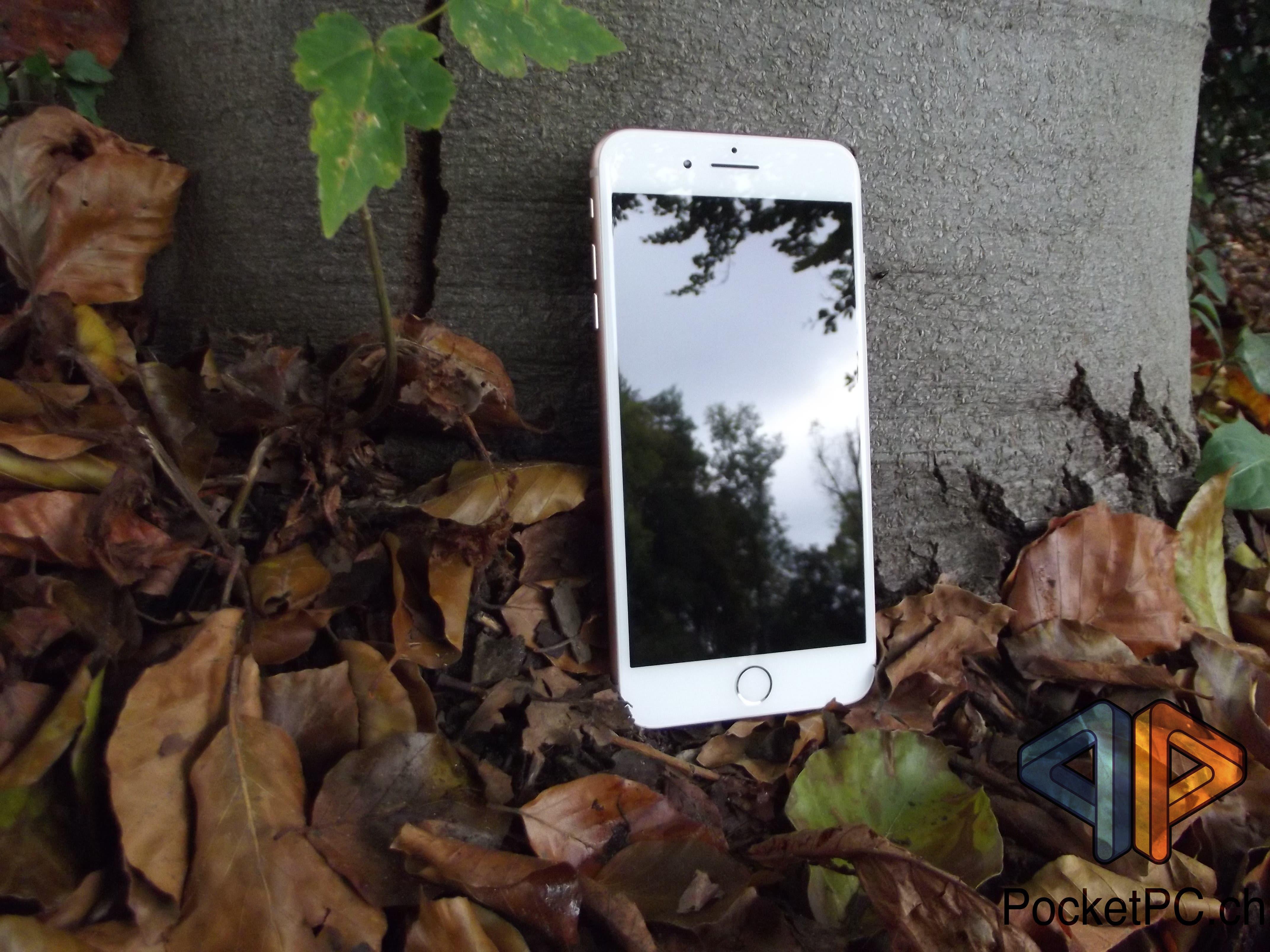 iPhone 8 Plus Display
