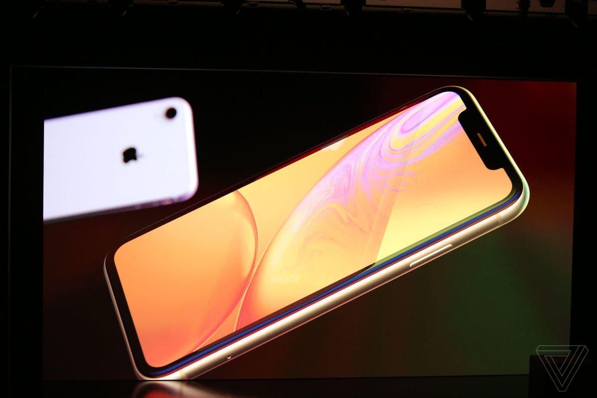 iPhone XR (Bild: The Verge/Dieter Bohn)