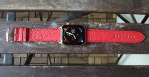 Mezando Apple Watch Armband Paprika Red