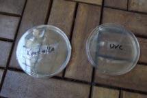 UVsoap UVC Surface Sanitizer